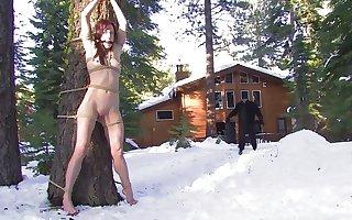 HogTied - Nina Kristine Dia Zerva Amber Penetrating