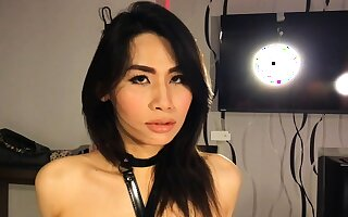 Promised laconic gumshoe Asian shemale blowjob added to bore shacking up